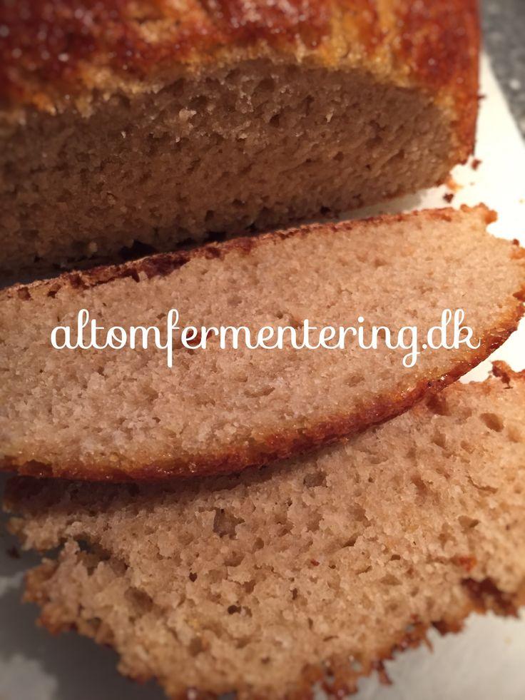 Vandkefir Surdej Smør Brød | ALT OM FERMENTERING – Fermentering på den nemme måde