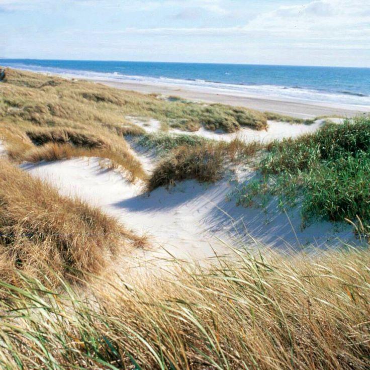 Blavand beach near Hvide Sande Denmark
