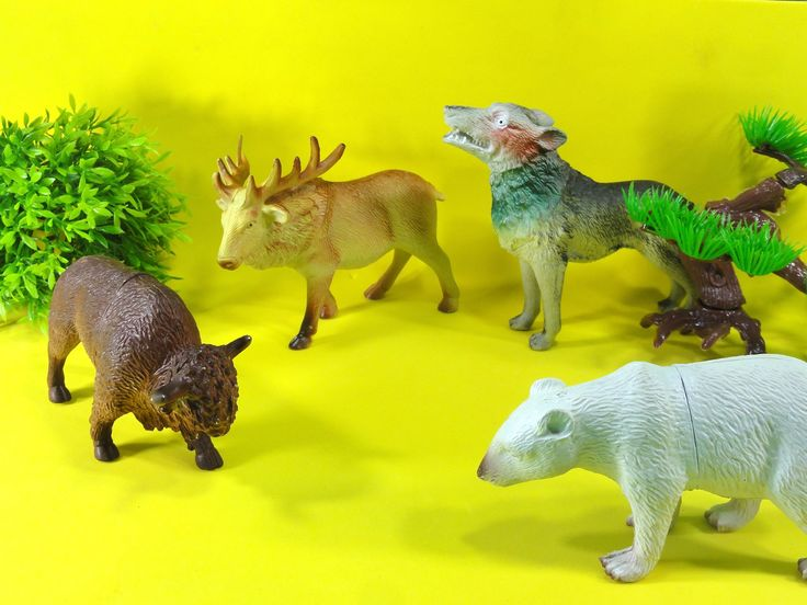 Toy Animals: bisao, alce, urso polar, lobo, unboxing little toy animals