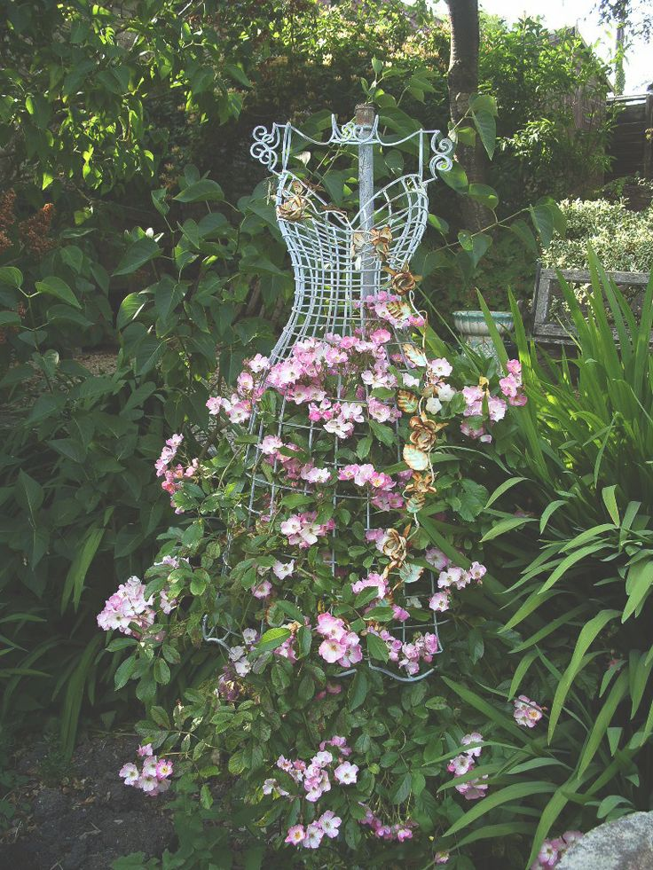 Wire Dress Form Used As A Trellis Great For Ur New Dawn