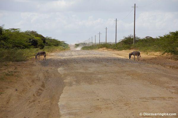 The flat, straight road to Cabo de la Vela, Guajira, Colombia