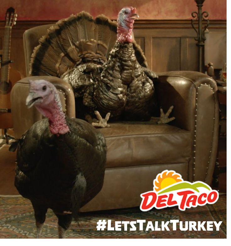 Find out what these turkeys are talking about at www.DelTaco.com/Turkey #LetsTalkTurkey