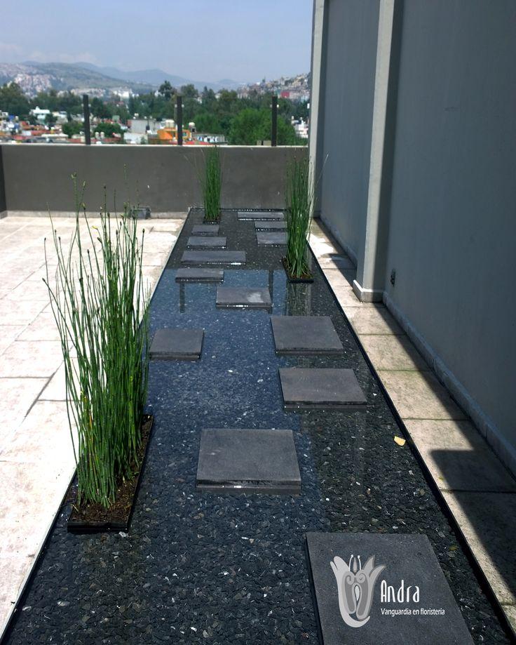 Espejo de agua con equisetum. | Jardinería y paisaje Andra ... - photo#3