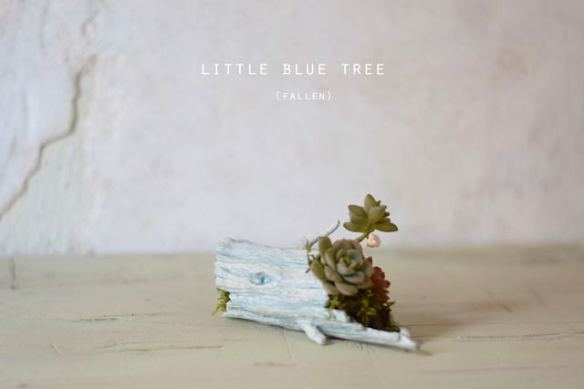 Little blue tree (fallen)