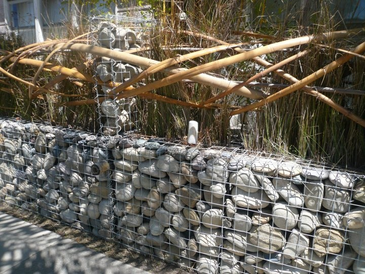 Gabion and bamboo fence in Venice, CA, designed by artist Stephen Glassman for his own property.: Gardens Ideas, Gabion Building, Stephen Glassman, Gardens Decor, Bamboo Who Knew, Artists Stephen, Gabion Ideas, Bamboo Fence, Front Fence