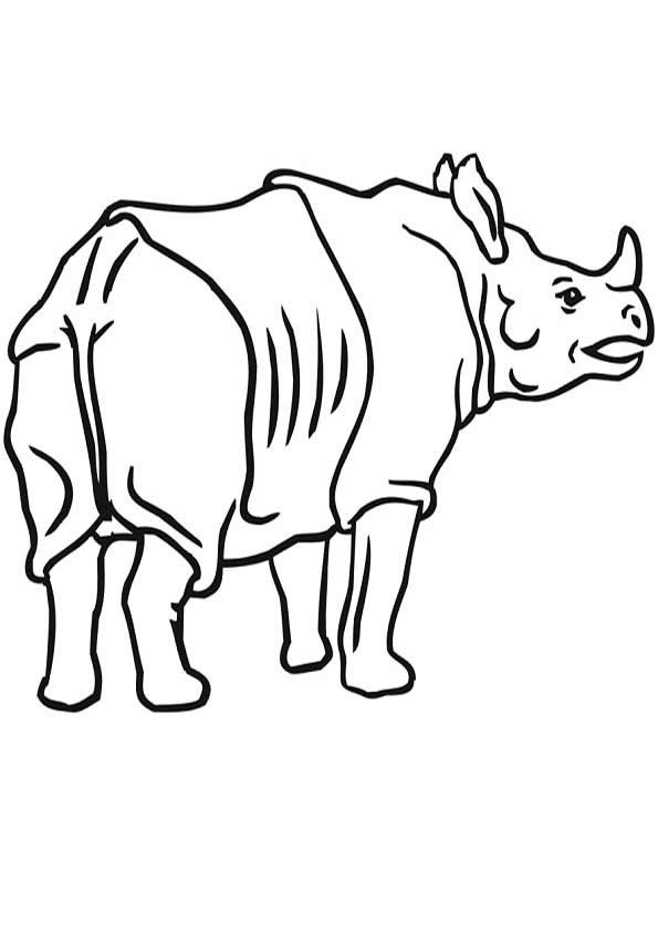 Nashorn Ausmalvorlage Ausmalbilder Pinterest Moose Art