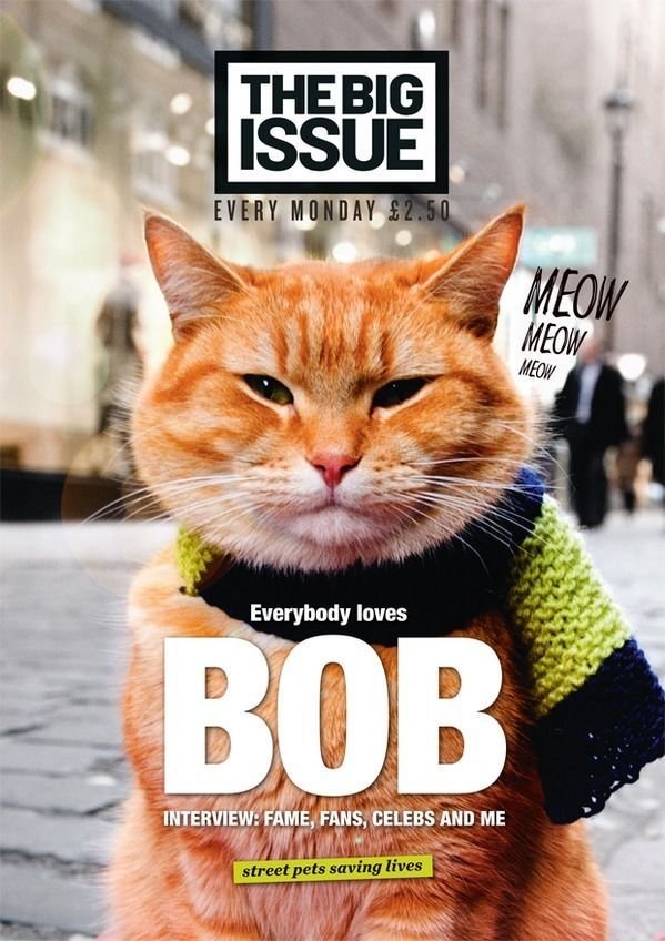 Big Issue Magazine Issue 1111 (14 July 2014) A Street Cat Named Bob - Missed out - Bid Now on eBay for chance to get your own copy. Auction ends Monday 28 July 14 @ 15:40 *****GOOD LUCK*****