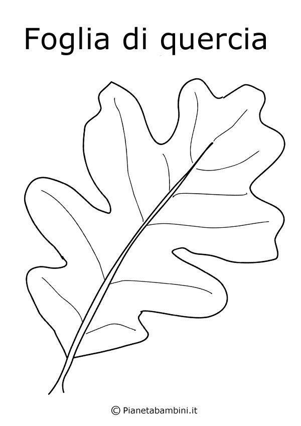 Disegni Di Frutta E Foglie Autunnali Da Colorare Fiori Foglie Di