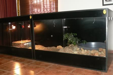 Savannah Monitor Cage | There are 4 air vents on each side of the cage.