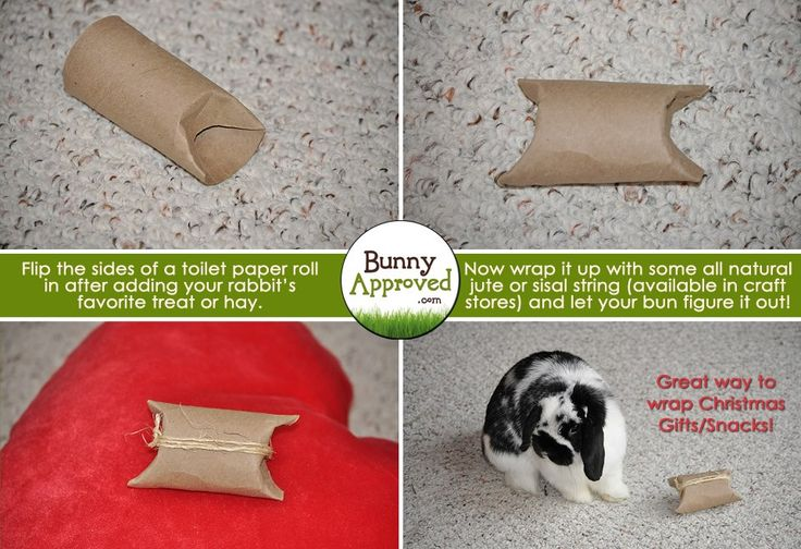 DIY Rabbit Toy Ideas | Bunny Approved – House Rabbit Toys, Snacks, and Accessories