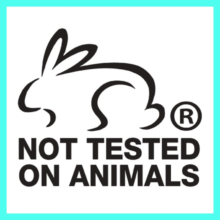 CrueltyFree Logos Which Bunny Logos Can We Trust (With