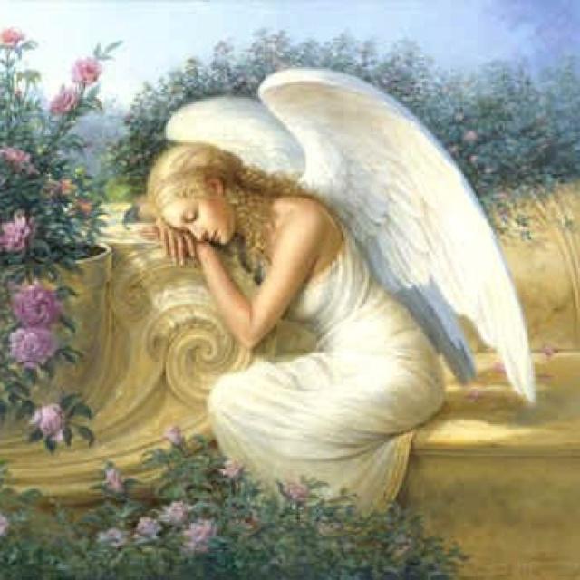 Angels- love Angels