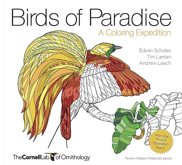 Birds Of Paradise A Coloring Expedition Is Truly Mindful Adventure Into The World Remarkable Creatures And Their Pristine Habitats In Papa New