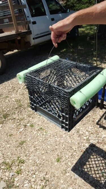 21 best images about fishing trap on pinterest how to for Homemade fish traps