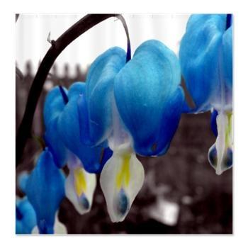 Blue Bleeding Heart Flowers Shower Curtain  A blue edit of Bleeding Heart Flowers $45.99