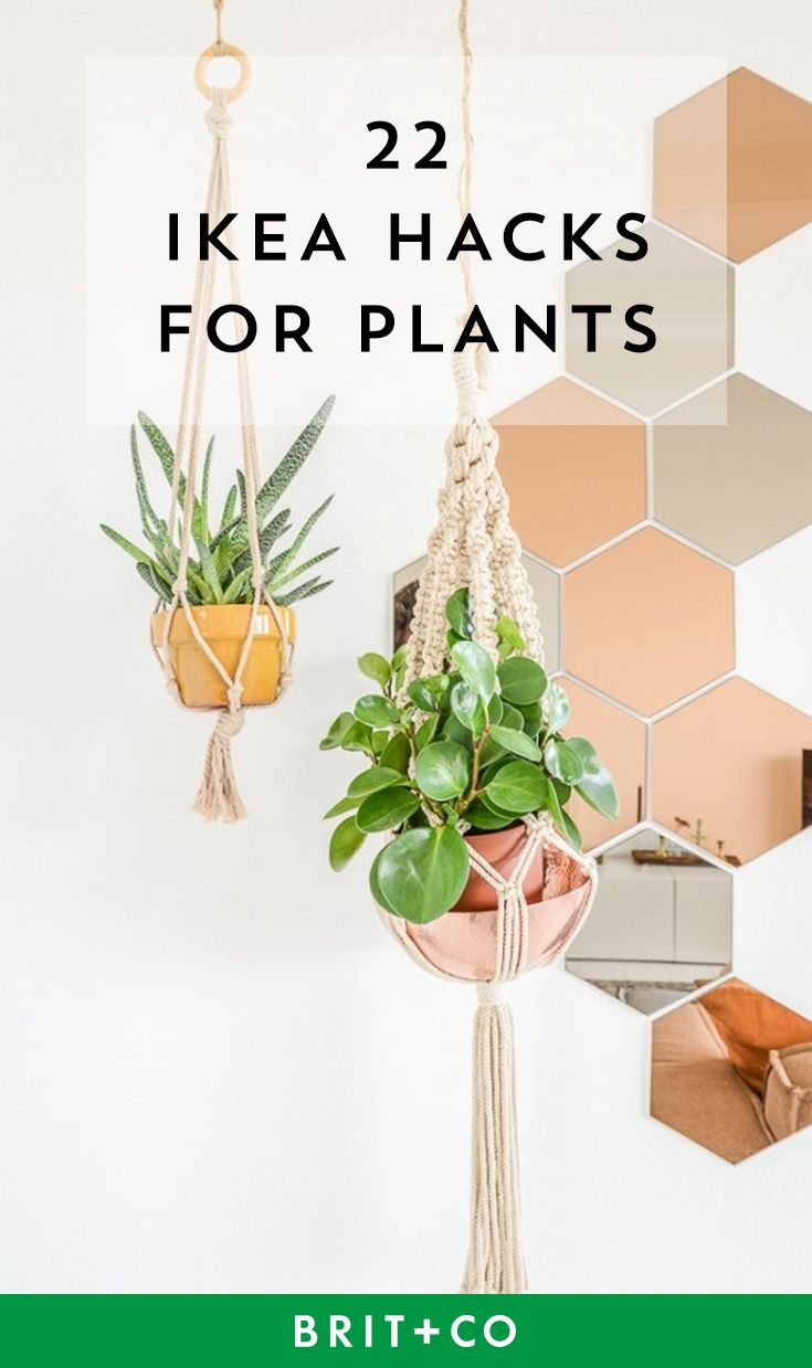 Save these IKEA hacks to put your indoor plants on display beautifully.