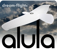 Dream Flight Alula Glider