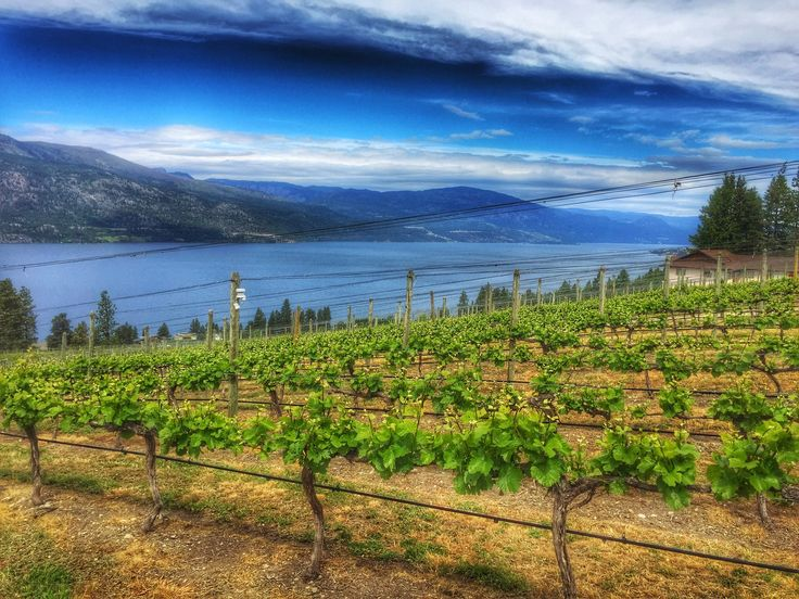Visiting Kelowna for a few days? Here is what Idid: places to see, hiking trails, restaurants, coffee shops, bakeries, and of course, wineries. In May 2016, we... Continue reading