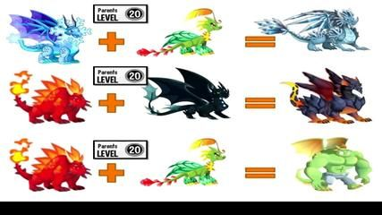Dragon city poker dragon breeding