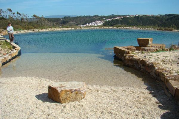 13 best images about piscinas naturalizadas on pinterest for Piscinas biologicas