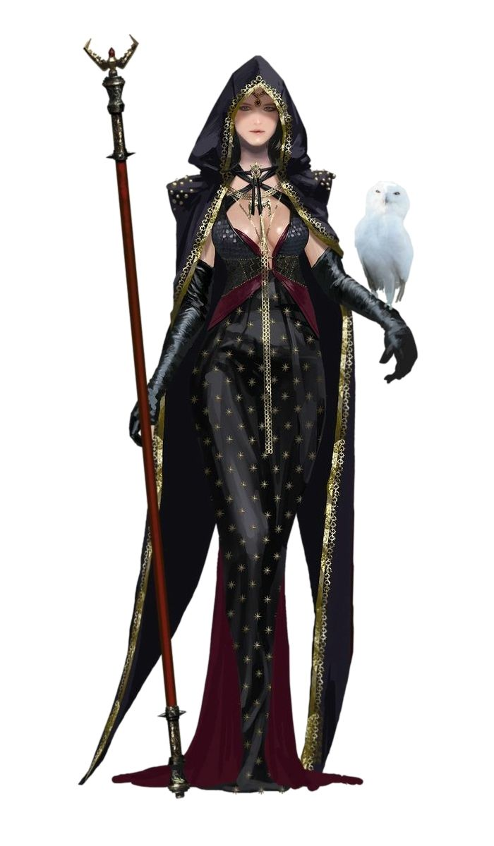 Female Human Wizard with owl familiar - Pathfinder PFRPG DND D&D 3.5 5th ed d20 fantasy