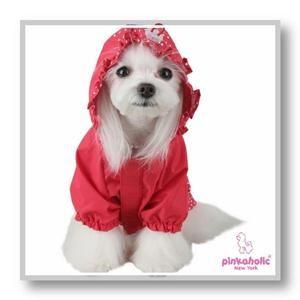 Oggi cambio decisamente argomento perché voglio parlarvi di #PETLOOK, un sito che vende #abbigliamento per #cani che ho appena scoperto!  Andate a dare un'occhiata!!! ♥