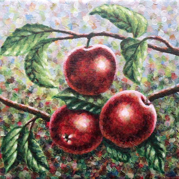 Part 1 (Apples) of diptych 'Apples & Pears', 2x20x20cm, alkyd oil on canvas - www.straverf.nl