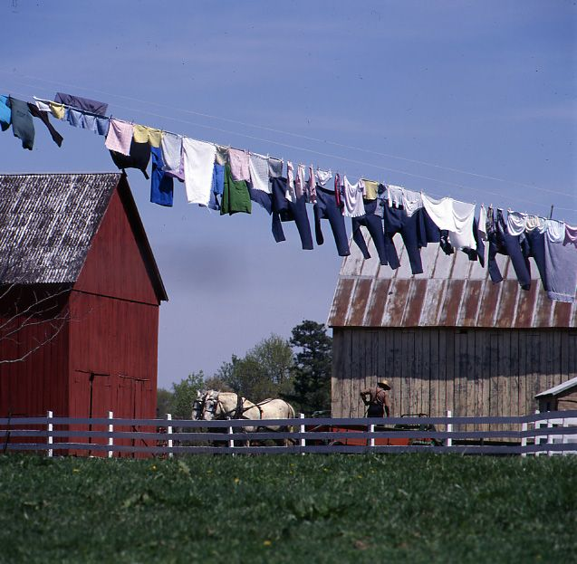 the old clothes line, had one growing up..& when first married...miss them now!  love the fresh smell of air dried clothes.  Especially sheets & linens