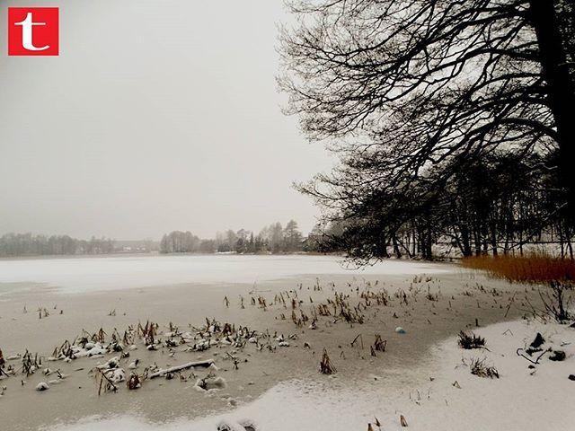 Zimowo  #Szczecinek #śnieg #zima #jezioro #LokalnieNajlepsi