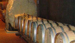 Vino Cabernet Sauvignon, un elisir galvanizzante