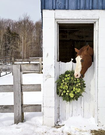 .Christmas Cards, Holiday, Christmas Wreaths, Winter Scene, Horses, Apples Wreaths, Children, Country Christmas, Winter Wreaths