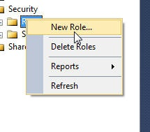 SQL Server Reporting Services 2012 Permissions