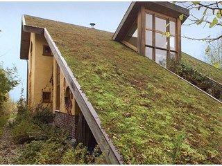 'Natuurlijk wonen': gids voor een bio-ecologisch bouwproject - Bio-ecologisch…