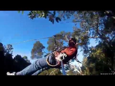 Tsitsikamma Canopy Tours, South Africa.