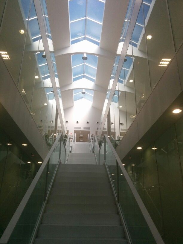 #Biblioteca Claudio Rodríguez del Campus Viriato de Zamora