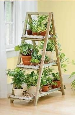 suporte plantas