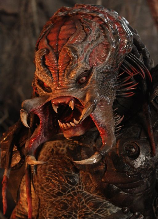 Berserker Predator unmasked   Predator alien, Predator ...