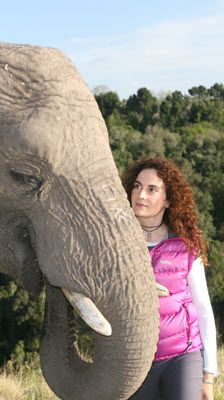 THE ANIMAL COMMUNICATOR ENHANCING THE RELATIONSHIP BETWEEN HUMANS, OTHER ANIMALS AND THE NATURAL WORLD