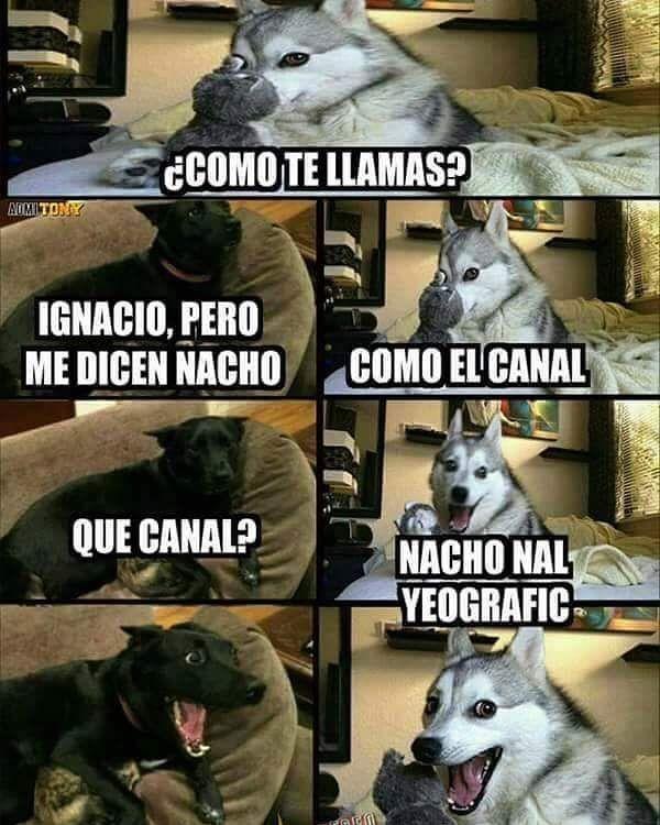 Imagenes de Humor Vs. Videos Divertidos - Mega Memeces