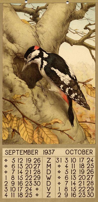 ¤ 1937 - September October. Description 1 calendar, 6 leaves : col. ill. ; 39 x 20 cm. Créateur:Voerman, Jan, Jr. ( illustrator)