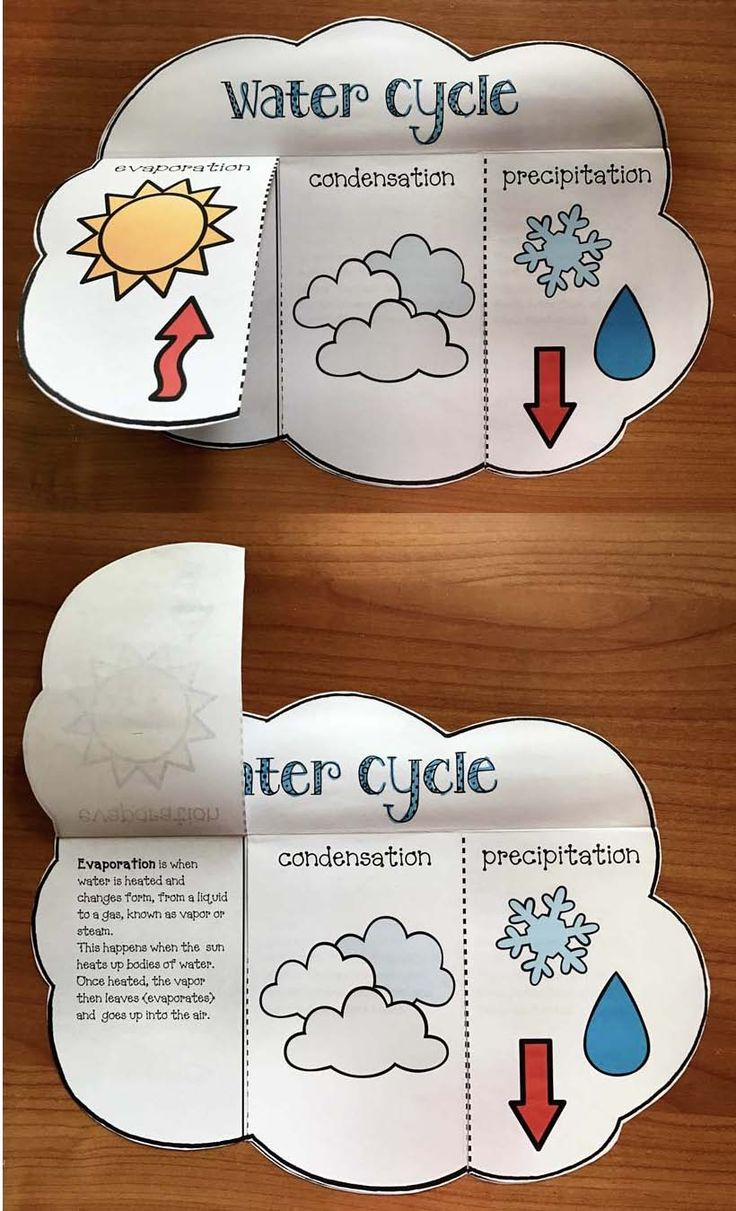 "Science activities: Super-simple ""print & go"" (Flip-the-flap) water cycle craft. BW + Color."