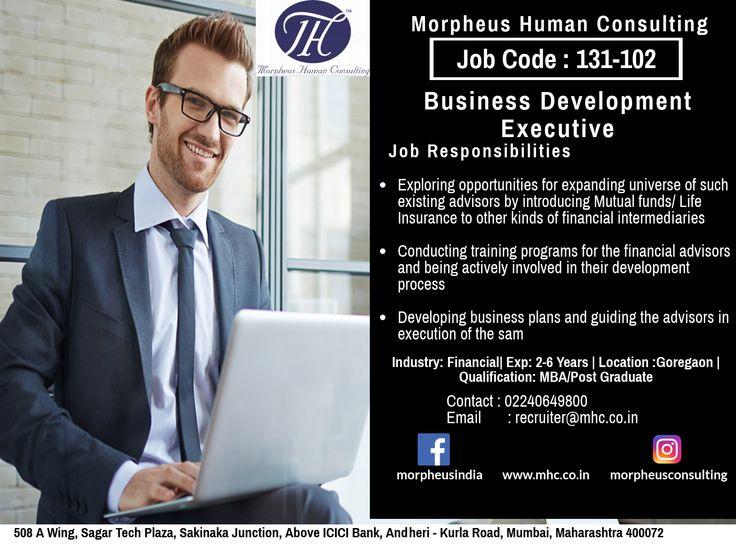 Business Development Executive 131102 Executive jobs