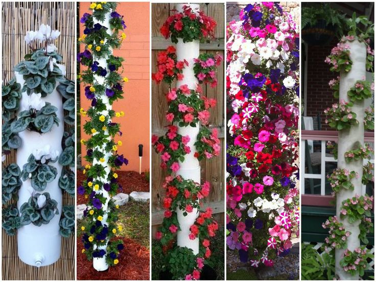Plantas do Meu Jardim: Crie torres de cano de PVC e plante seus temperos e ervas aromáticas