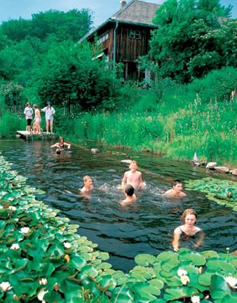 Love to swim but hate the chlorine? Here's a collection of amazing natural pools that offer a chemical-free way to stay cool. Natural Swimming Pools. Natural pools eliminate harsh chemicals like chlorine by combining the cleaning properties of plants with bio-filtration and skimming systems.