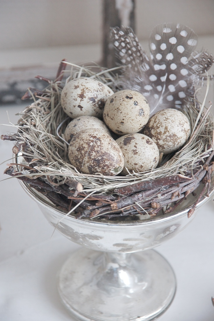 Vintage silver, speckled eggs, nest and feathers create a beautiful Spring decoration.