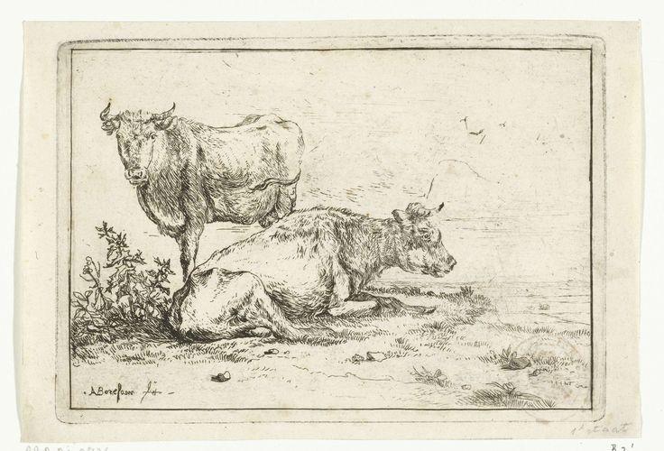 Anthonie van Borssom | Twee koeien, Anthonie van Borssom, 1639 - 1677 | Twee koeien. Een koe ligt in de lengte met zijn hoofd naar rechts. De andere koe kijkt de kijker recht aan.