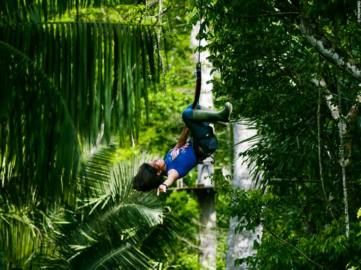 Image result for tambopata adventures