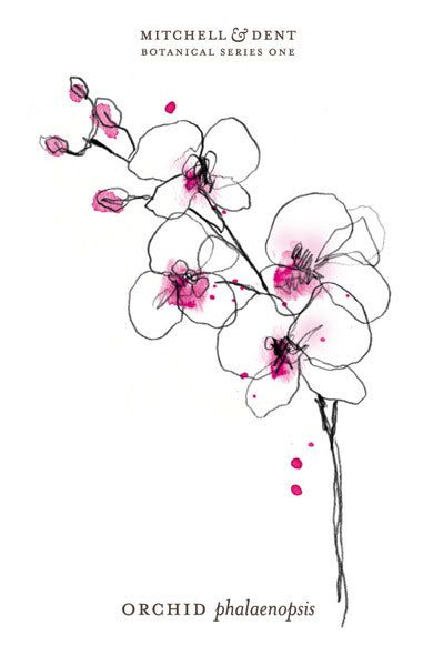 the orchid small print | MITCHELL & DENT                                                                                                                                                      More