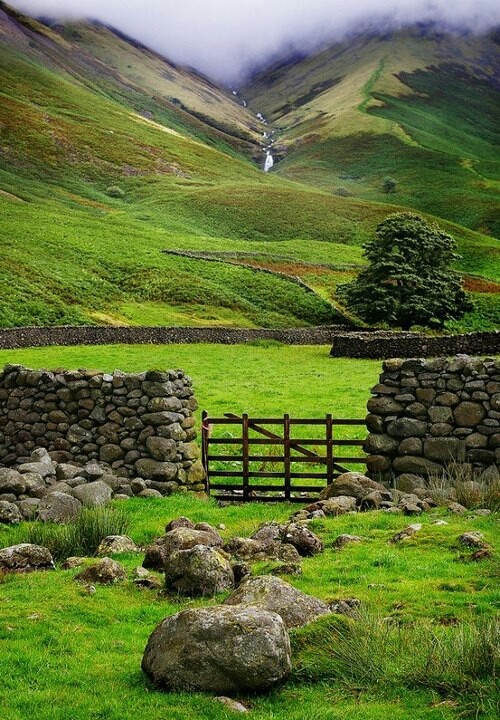 Landscape in Ireland - pretty green with stone fencing
