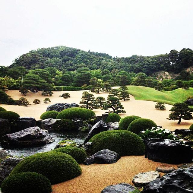 In the profound silence🍀 #adachimuseum #足立美術館 #bestgarden #japanesebeauty #garden #jardin #庭園 #michelingreenguide #zen #peace #yasuki #shimane #旅行 #travelgram #instagramjapan #japan #日本の美 #旅行好き #島根 #安来